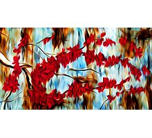 Abstract Cherry Tree Oil Painting Photographic Print