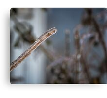"""Frozen Branch"" Canvas Print"