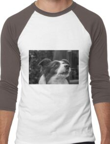 expression of a border collie and howls Men's Baseball ¾ T-Shirt