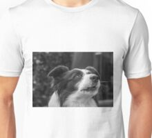 expression of a border collie and howls Unisex T-Shirt