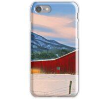BARN,WINTER iPhone Case/Skin
