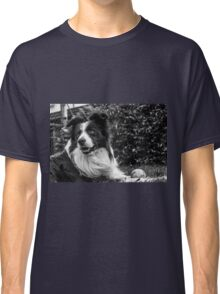 expression of a border collie Classic T-Shirt