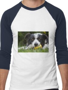 portrait of a border collie dog while playing with a ball Men's Baseball ¾ T-Shirt