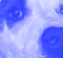 Blue Pit Sticker