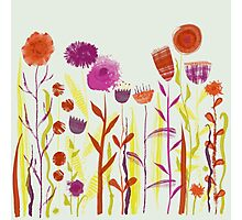 Mixed up Meadow Photographic Print