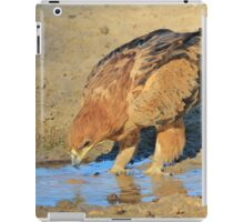 Tawny Eagle - Curious Life and Funny Nature iPad Case/Skin