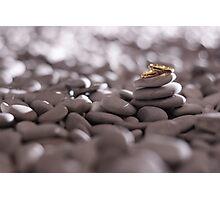wedding ring Photographic Print