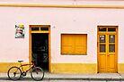 Schneider Cerveza by photograham