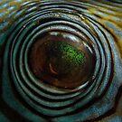 Puffer's Eye V2.01 by James Deverich