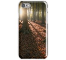 Kingswood Autumn iPhone Case/Skin