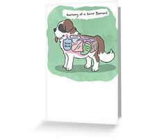 Anatomy of a Saint Bernard Greeting Card