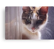 Lucky13  Canvas Print