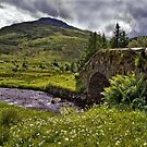 The Butterbridge Crossing by Geoff Carpenter