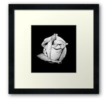 Rosebud in Black and White Framed Print