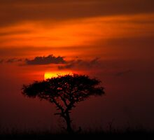AFRICAN SUNSET by marieleephoto