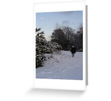 New Forest in the snow Greeting Card