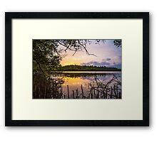 WATAMU MANGROVE SWAMP SUNSET Framed Print