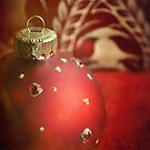 Red and gold Christmas bauble by Lyn  Randle