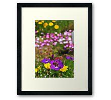 Bee buffet Framed Print