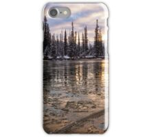 Fighting the Deep Freeze iPhone Case/Skin
