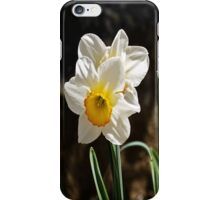 Daffodil or Narciso? iPhone Case/Skin
