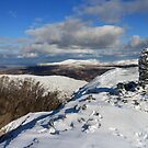 Dale Head  by RoystonVasey