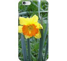 Tattered Daffodil iPhone Case/Skin