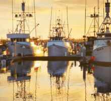 Seaport Sunset Sticker