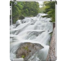 Dragon Fall iPad Case/Skin