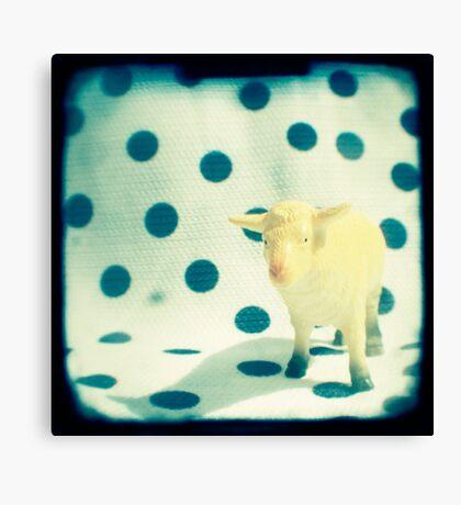 Look at ewe Canvas Print