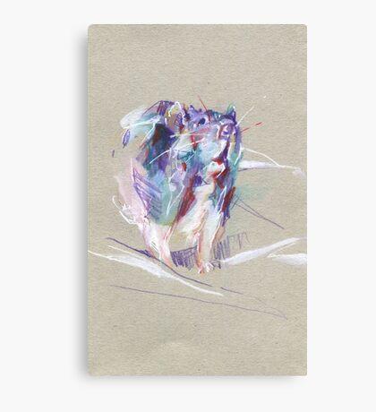 Rat sketch Canvas Print