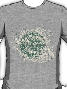 In a field of daisies T-Shirt