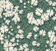 In a field of daisies by StudioRenate