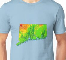 Physically Connecticut Unisex T-Shirt