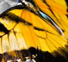 Tiger Swallowtail Butterfly 2 Sticker