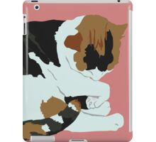 Cozy Calico iPad Case/Skin