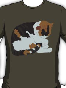 Cozy Calico T-Shirt