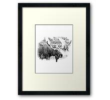 Bull Moose. Wildlife Moose. Moose Antlers. Canadian Moose. Alaskan Moose. Framed Print