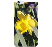 Yellow Daffodil  iPhone Case/Skin
