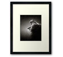 Lion close-up Framed Print