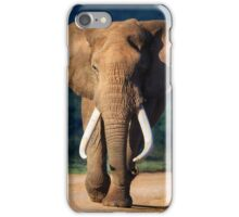 Elephant approaching iPhone Case/Skin