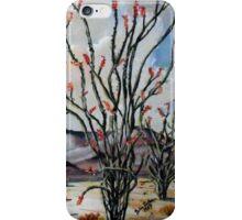 Ocotillo Wells, California iPhone Case/Skin