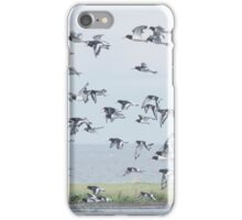 Oyster Catchers take flight iPhone Case/Skin