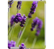 Lavendar iPad Case/Skin