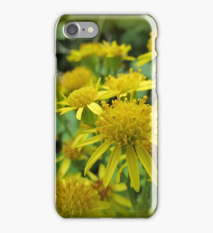 Daisies Macro iPhone Case/Skin