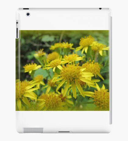 Daisies Macro iPad Case/Skin