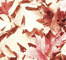 Autumn Leaves by digitaleclectic