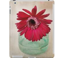 Gerbera Daisy in a teal clear vase. iPad Case/Skin
