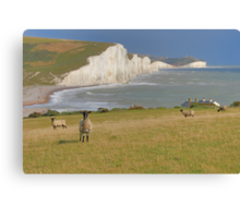 Sheep and the Seven Sisters - HDR Canvas Print