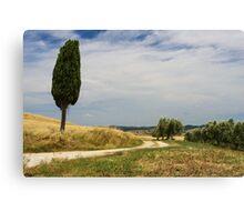 A Tuscan Scene, Pienza, Siena, Tuscany, Italy Canvas Print